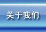 """盈禾国际--综合体育用品网站网站""""关于我们""""栏目"""